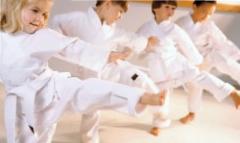 vous taekwondo mini ninjas