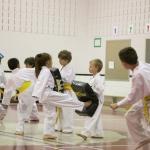 Taekwondo Villeneuve en image - 6