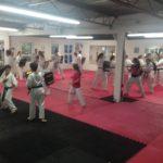 Taekwondo Villeneuve en image - 5